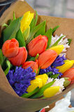 Colorful tulip bouquet Royalty Free Stock Photography