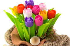 Colorful tulip on flowerpot in sack Royalty Free Stock Image