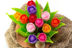 Colorful tulip on flowerpot in sack. Colorful tulip on flowerpot in a sack stock photo
