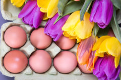Colorful tulip flowers and eggs Stock Photo