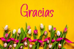 Colorful Tulip, Gracias Means Thank You, Easter Egg, Yellow Background