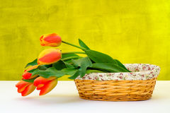 Colorful tulip on white table in basket Stock Photography