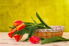 Colorful tulip on wooden table in basket Royalty Free Stock Photography