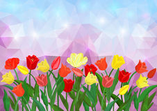 Colorful tulips border on triangle background Royalty Free Stock Image