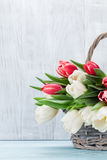 Colorful tulips bouquet Stock Images