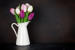 Colorful tulips bouquet Stock Photos