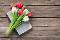 Colorful tulips bouquet Stock Image