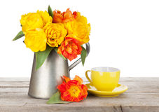 Colorful tulips bouquet in watering can and coffee cup Royalty Free Stock Photo