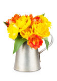 Colorful tulips bouquet in watering can Stock Images