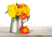 Colorful tulips bouquet in watering can Royalty Free Stock Photography
