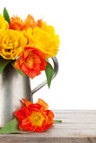 Colorful tulips bouquet in watering can Stock Photos