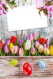 Colorful tulips with easter eggs on wooden table. Royalty Free Stock Photography