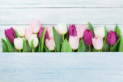 Colorful tulips. In front of wooden wall. Easter card. With space for your greetings Royalty Free Stock Photos