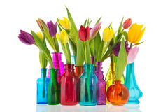 Colorful tulips in glass vases. Colorful tulips one by one in different glass vases Royalty Free Stock Photos