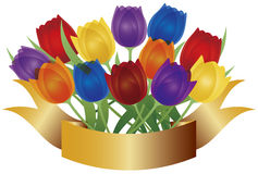 Colorful Tulips with Gold Banner Illustration Stock Photography