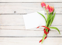 Colorful tulips and greeting card Stock Image