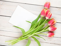 Colorful tulips and greeting card Stock Images