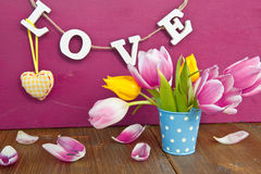 Colorful tulips in a little bucket Stock Photo