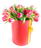 Colorful tulips in a round hat box, isolated on white background. Colorful tulips in a round hat box, isolated on white Royalty Free Stock Photography