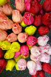 Amsterdam Tulips for Sale Royalty Free Stock Image