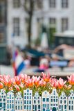 Tulips and souvenir canal houses in front of an Amsterdam canal Royalty Free Stock Images