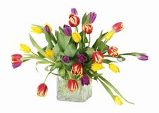 Colorful tulips in vase. Colorful tulip bouquet in glass vase; clipping path Royalty Free Stock Photography