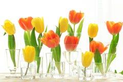 Colorful tulips in vase Stock Photo