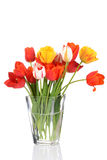 Colorful tulips in a vase Stock Photography