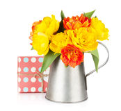Colorful tulips in watering can and gift box Royalty Free Stock Photos