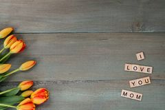 Colorful tulips on weathered green planks. Tile letters with sen. Timent for Mother`s Day Royalty Free Stock Photography