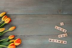 Colorful tulips on weathered green planks. Tile letters with sen. Timent for Mother`s Day Royalty Free Stock Photos