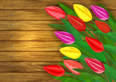 Colorful tulips on wooden background Stock Images