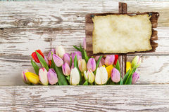 Colorful tulips on wooden table. Stock Image