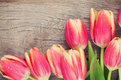 Colorful tulips on wooden table Royalty Free Stock Photography