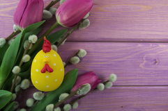 Colorful tulips stock images
