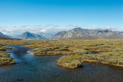 Colorful tundra in front of the river and Royalty Free Stock Photography
