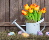 Colorful Tupips and Easter Eggs Royalty Free Stock Image