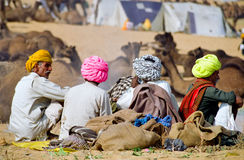 Colorful Turbans at the India camel festival. 4 camel traders having a coffee break while displaying an aesthetic and colorful set of turbans, Pushkar, India stock image
