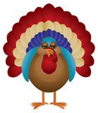 Colorful Turkey Illustration Royalty Free Stock Photography