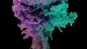 Colorful turquoise and violet ink rise up in the water and mixing, swirling softly underwater on black background stock illustration