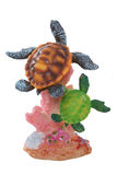 Colorful Turtles royalty free stock photo