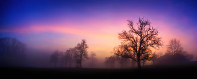 Colorful twilight winter landscape panorama Stock Images