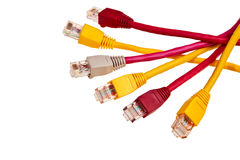 Colorful twisted pair patchcords. Stock Photography