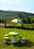 Colorful umbrella Royalty Free Stock Image