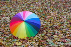 Colorful umbrella lying on yellow leaves Stock Photos