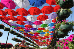 Colorful Umbrella pathway Stock Photos