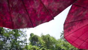 Colorful umbrella in vacation area natural view. Looking up angle stock footage
