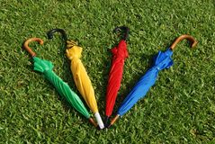 Colorful umbrellas. On the football field royalty free stock photos