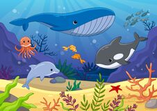 Free Colorful Underwater World With Whales And Dolphin Stock Photos - 176245123