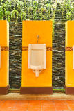 Colorful of urinals with creeper plant Royalty Free Stock Photo